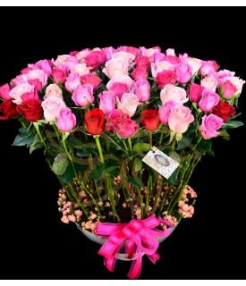 Flores Rosas Puras
