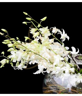 Flores Media Luna