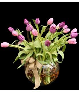 Tulipanes Pastel de Lujo