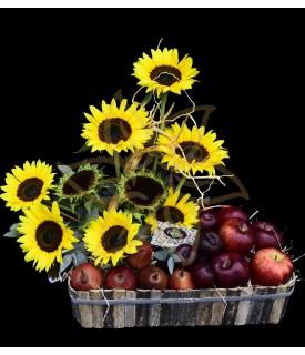 Girasoles con fruta