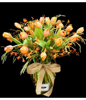 Tulipanes al Atardecer