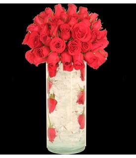 Rosas Congeladas