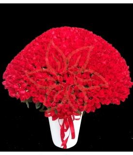 1000 Roses
