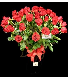 50 Rosas Románticas