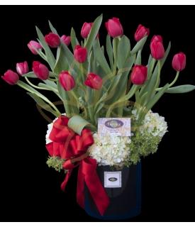 Tulipanes You Are So Beautiful