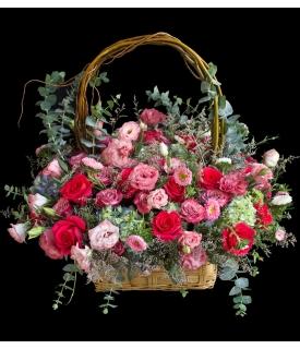 scarlet roses