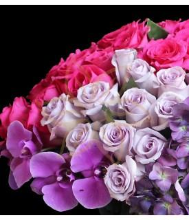 Flores Cielo Indigo