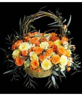 Tangerine Garden