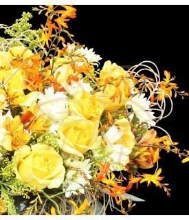 Flores Rayo de Sol