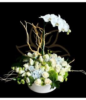 Rosas Hortensias y Orquídea