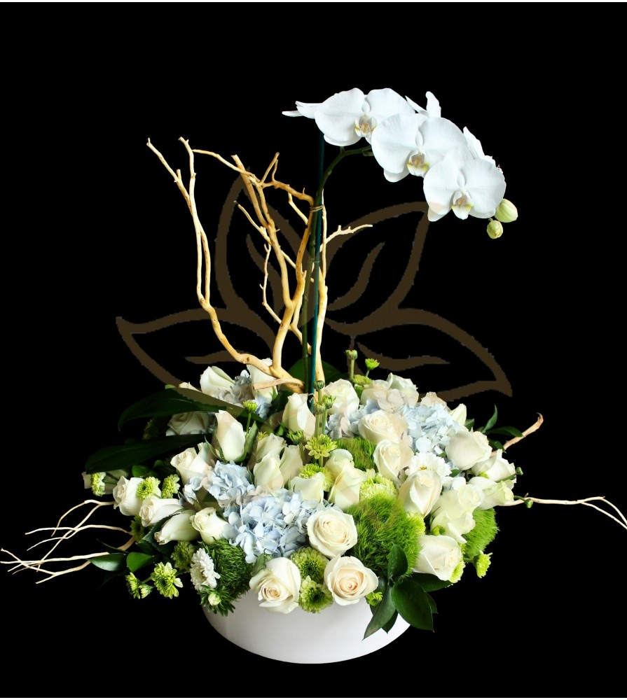 Roses Hydrangeas and Orchid