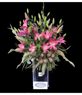 Flores Lilis de ensueño
