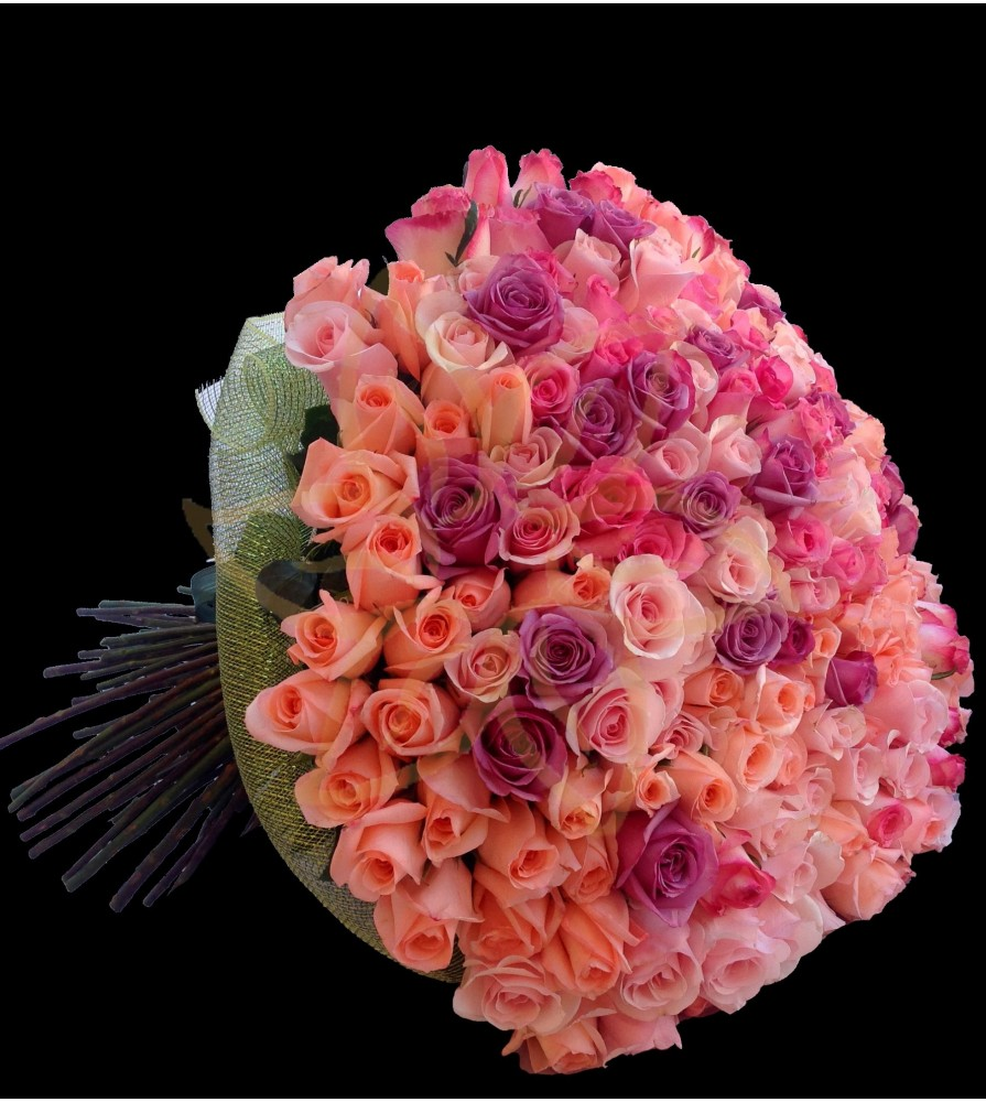 Flowers 200 Roses Bouquet