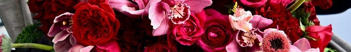 Monocromatic Floral Arrangments