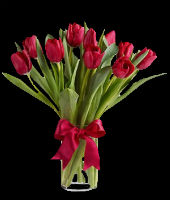 Tulipanes Fiorence